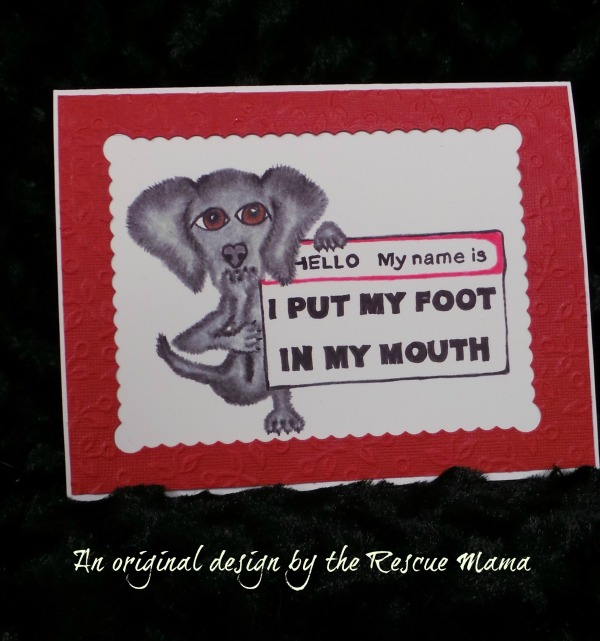 Foot in mouth apology card
