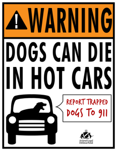 ALDF-dogs-in-hot-cars-flyer