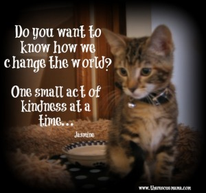 Jasmine change the world